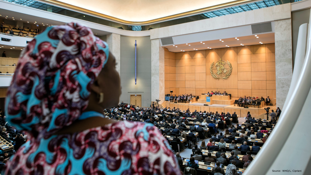 photo of the plenary, in the foreground a woman with african clothing, in the background the crowded room with someone giving a speech
